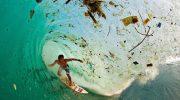 Doğa katliamını anlatan etkileyici fotoğraflar